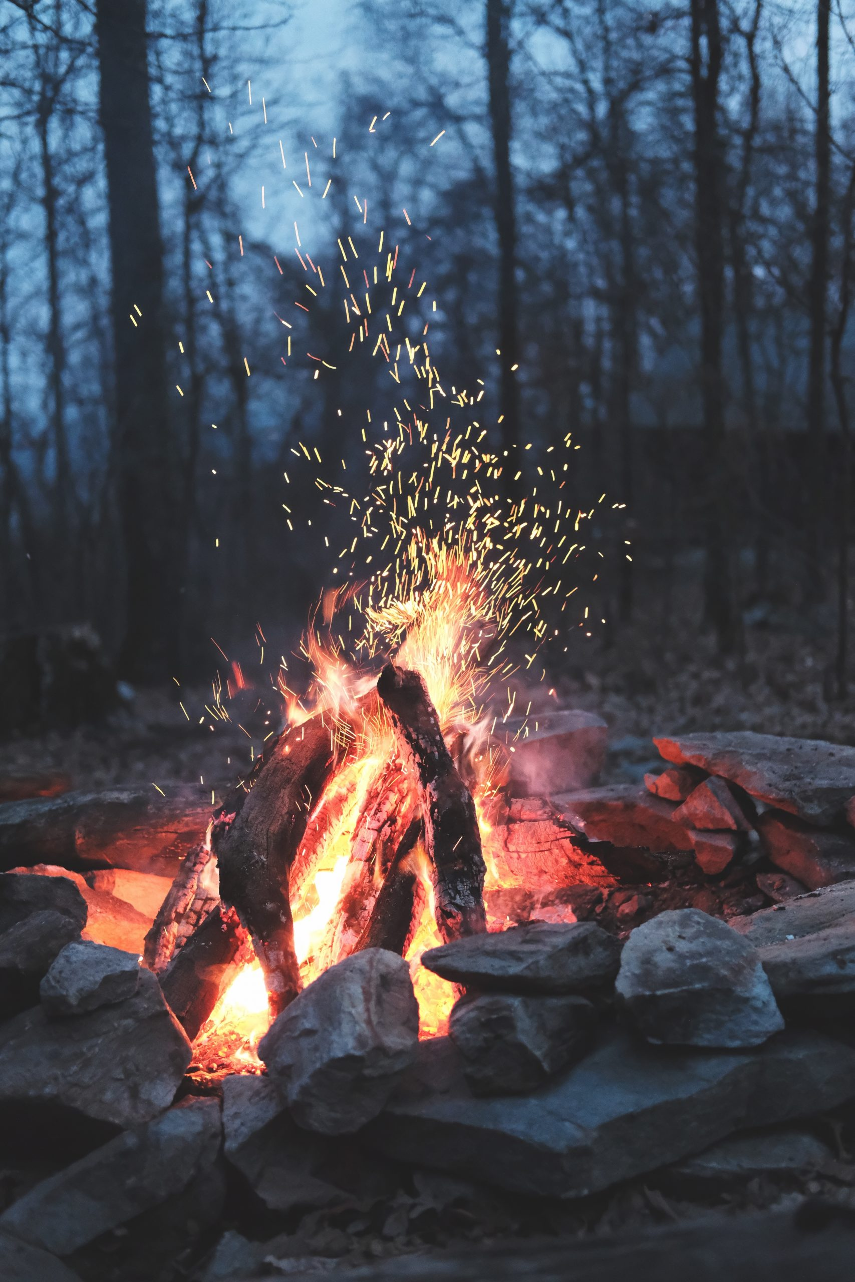 Portfolio Fire