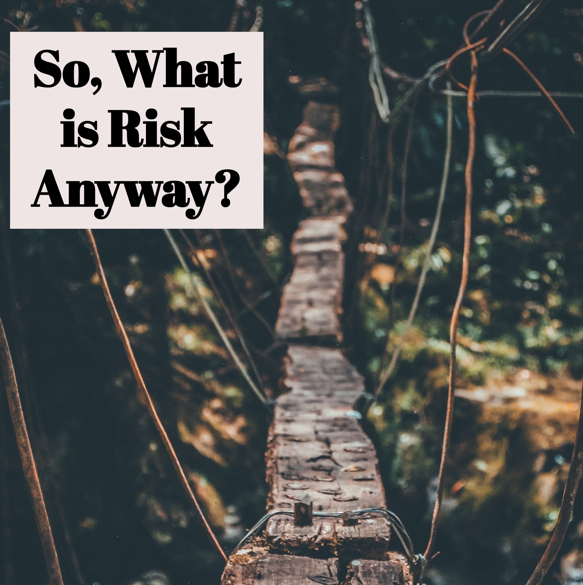 What is Risk?